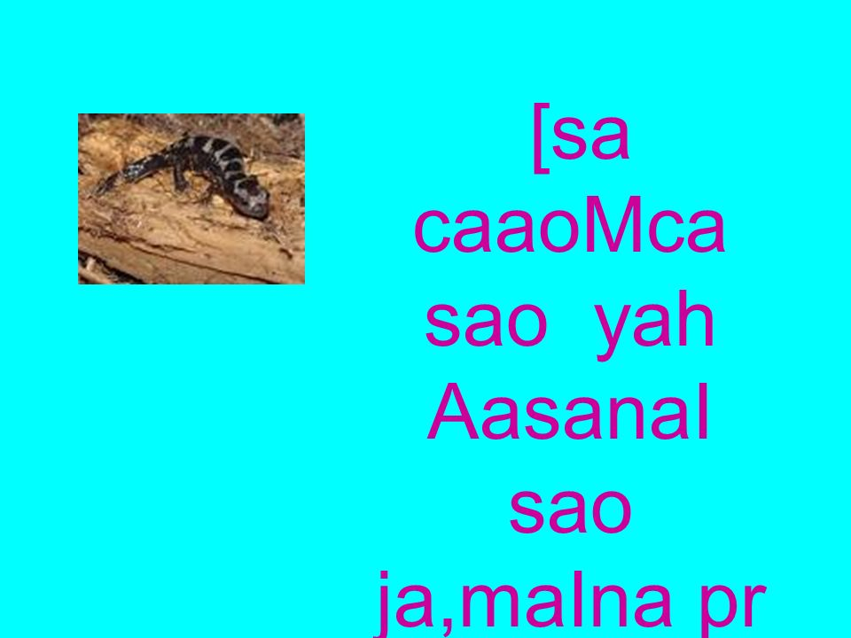 [sa caaoMca sao yah AasanaI sao ja,maIna pr iCpo kID,o makaoD,aoM kao KatI hO.